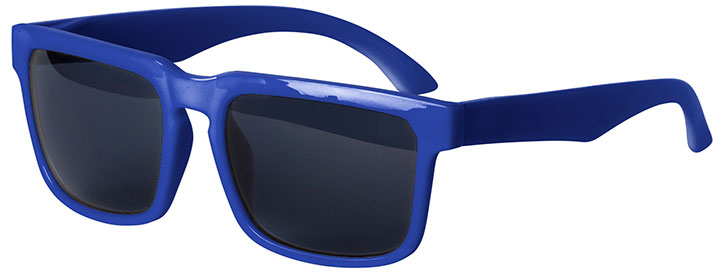 Royal Blue Bold Sunglasses